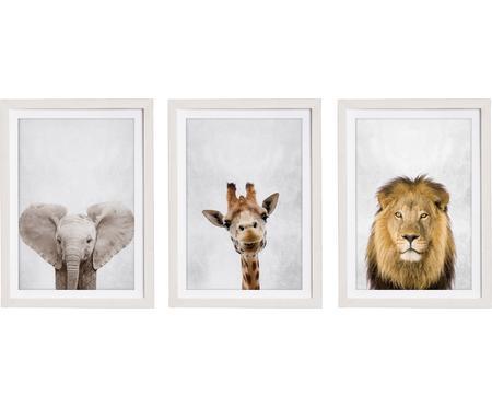 Ensemble d'impressions numériques encadrées Wild Animals, 3élém.